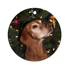 Hungarian Vizsla Christmas Ornament (Paris)