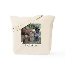 Evolution-Tote Bag