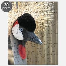 Helaine's Crowned Crane Puzzle