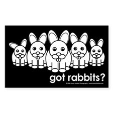 got Rabbits? Black Rectangular Decal
