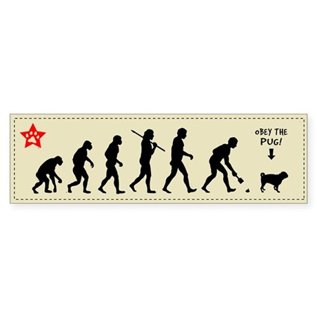 PUG Evolution - Dog Bumper Sticker