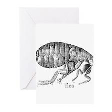 flea Greeting Cards (Pk of 10)