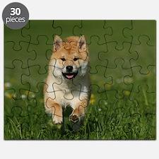 Shiba Inu Puzzle
