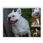I love French Bulldogs, Calendar
