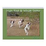 Irish Red & White Setter Calendar 2013