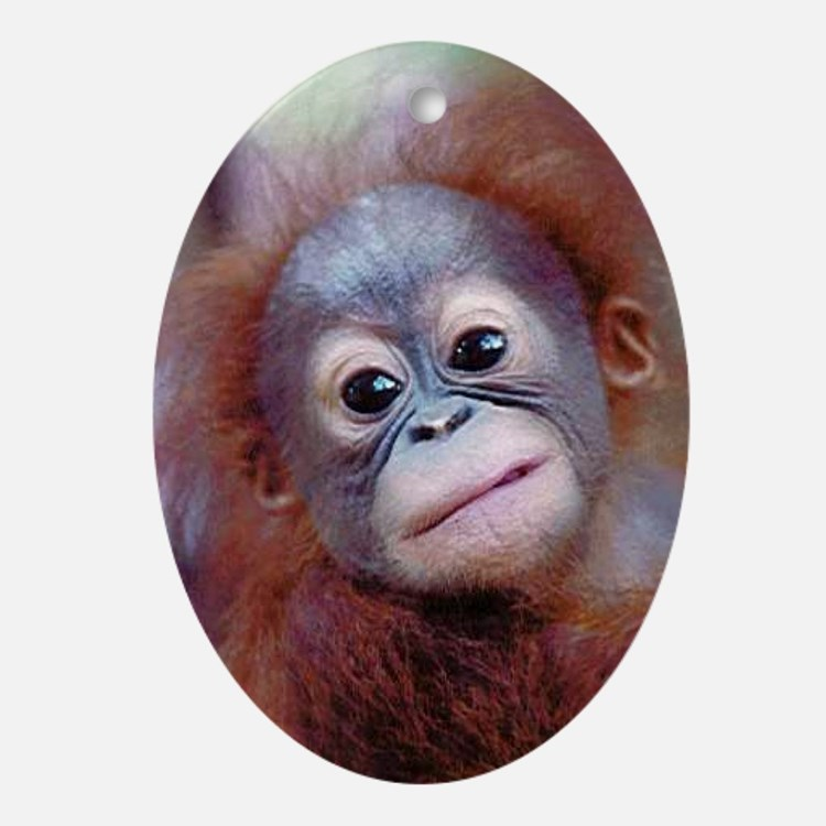 Orangutan Ornament (Oval)