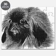 Pekingese Pencil Drawing Puzzle