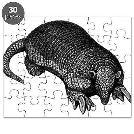 Giant Armadillo Puzzle