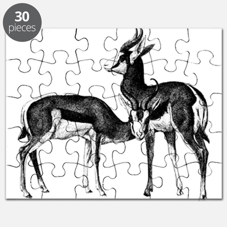 Springboks Puzzle