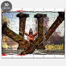 samson Puzzle