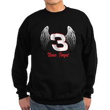 DE3wings Jumper Sweater