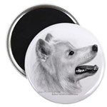 Samoyed Magnet
