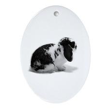 Holland Lop Rabbit - Broken B Ornament (Oval)