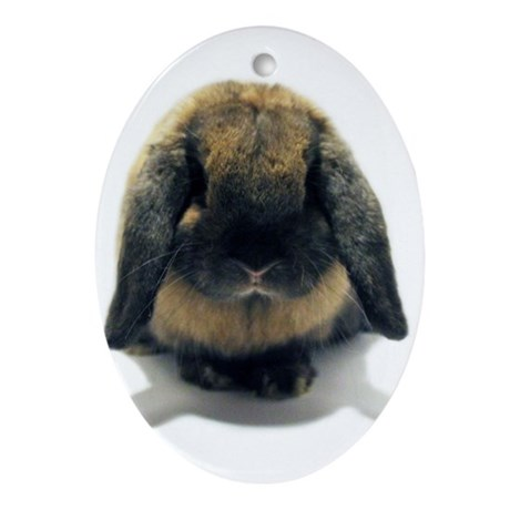 Holland Lop Rabbit Tort Ornament (Oval)