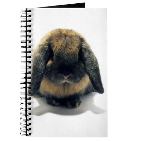 Holland Lop Rabbit Tort Journal