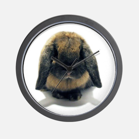 Holland Lop Rabbit Tort Wall Clock
