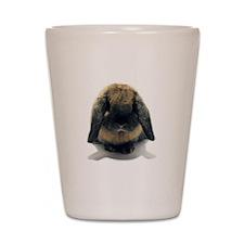 Holland Lop Rabbit Tort Shot Glass