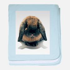 Holland Lop Rabbit Tort baby blanket