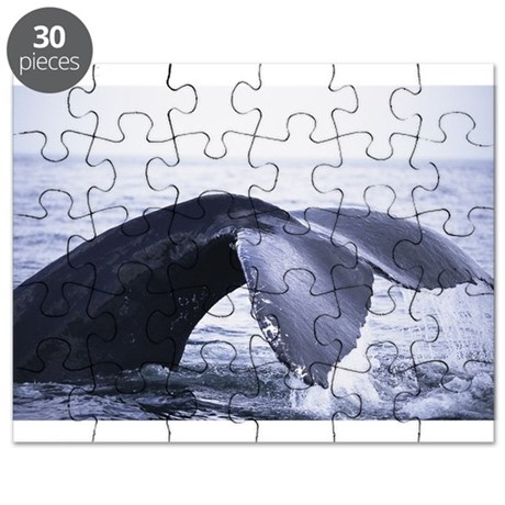 Whales Tail Puzzle