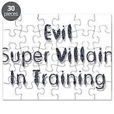 Super Villain Puzzle