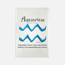 Aquarius 1 Rectangle Magnet
