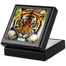 Tiger Photo Keepsake Box