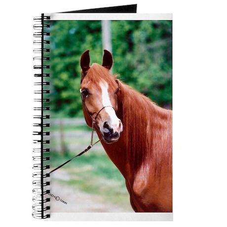 Scarlet Elegance Arabian mare Journal