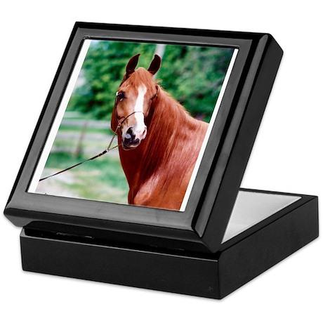 Scarlet Elegance Arabian mare Keepsake Box