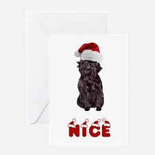 Nice Affenpinscher Greeting Card