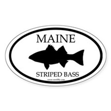 Maine Striped Bass Oval Decal