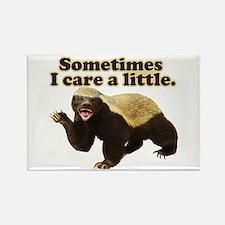 Honey Badger Sometimes I Care Rectangle Magnet