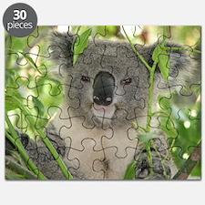 Helaine's Koala Bear Puzzle