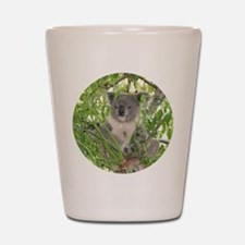 Helaine's Koala Bear Shot Glass