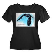 American Crow T