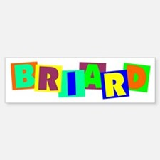 Briard BLOCKS Bumper Bumper Sticker