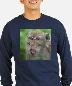 Crab-eating Macaque Monkey T