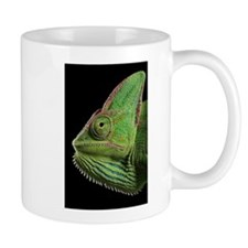 Unique Bearded dragon art Mug