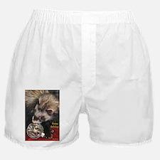 Ferrets Boxer Shorts