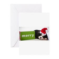 Merry Greeting Cards (Pk of 10)