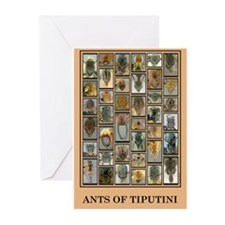 Ants of Tiputini Greeting Cards (Pk of 10)
