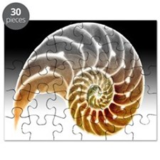 Nautilus Shadow Puzzle