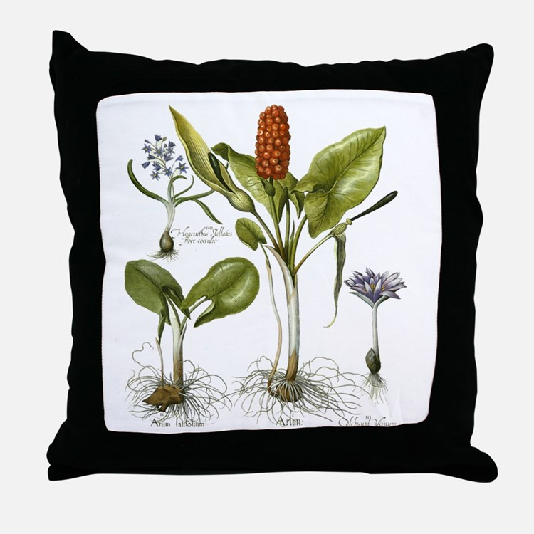 Modern Botanical Pillow : Botanical Pillows, Botanical Throw Pillows & Decorative Couch Pillows