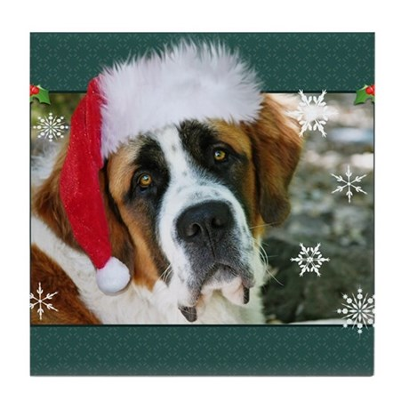 St Bernard Christmas Cards