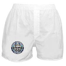 USN Missile Technician Skull Boxer Shorts