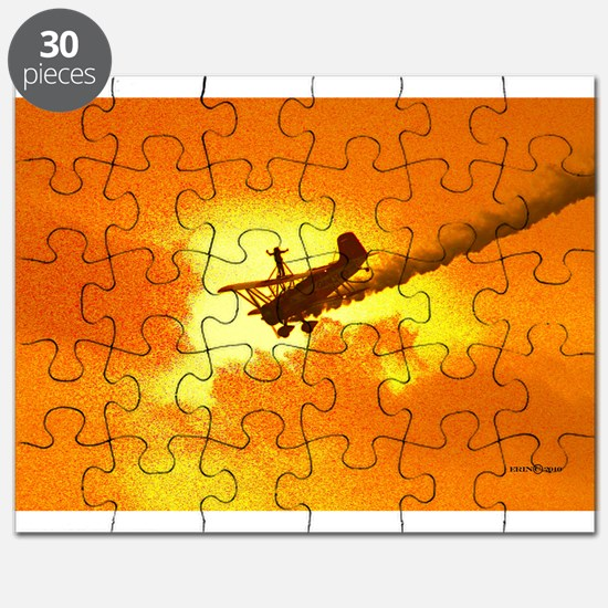 Wing Walker 1 Puzzle