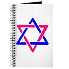 Pink&Blue Star of David Journal