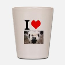Pictures of Goats and Sheep w Shot Glass
