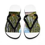 Echo Trail Flip Flops