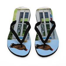 Turkey Vulture Flip Flops