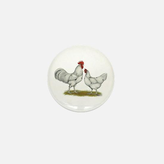 Austra White Chickens Mini Button